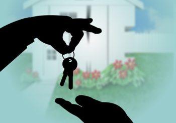 Hledám nemovitosti k prodeji či pronájmu